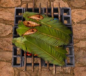 kei tahitian-grill